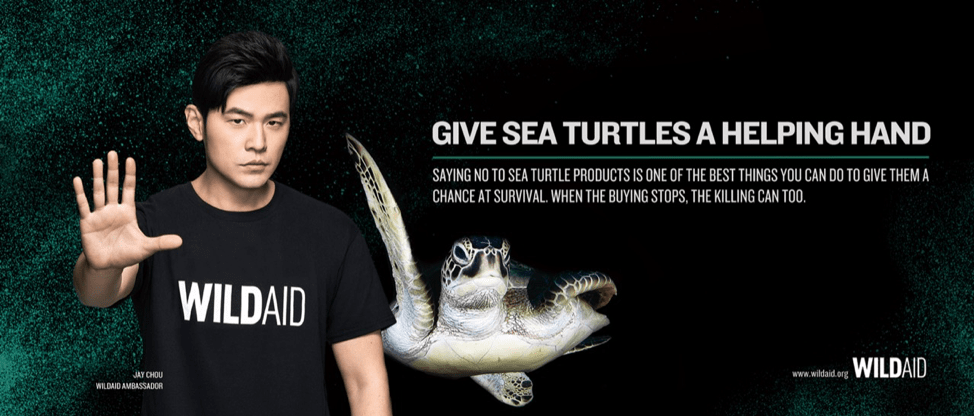 Say no to sea turtle products